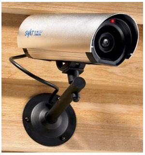 Burglar Deterring Alarm Camera